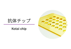 eyecatch_project03_kotai-chip